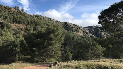 Sierra de las Nieves omgeving van outdoor week voor scholen