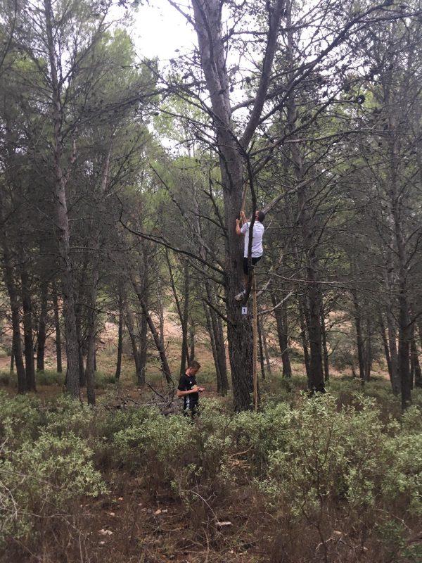 adventure run tijdens 1-oudervakantie in Spanje