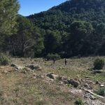 zoek de route tijdens actieve vakanties Spanje