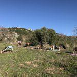 yoga tijdens outdoor vakanties in Spanje