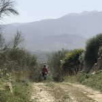single track at mountainbike holiday in Spain