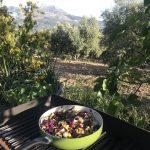 healthy food at active outdoor yoga retreat in Spain