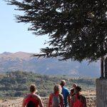 ronda tijdens yoga en hike/trailrun vakantie in Spanje