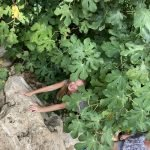 hide and seek in yoga and outdoor holiday in Spain